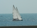 Sails for Farr-42